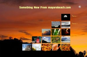 Something New From mayarobeach.com