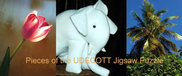 udecott-600