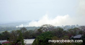 trinidad-and-tobago-bush-fire