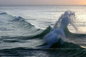 Store Bay Tobago - Tall Wave-2007